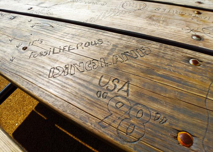 Dinoland table art